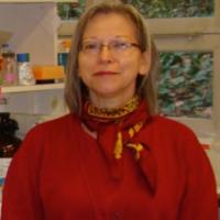 Sylvie Galiègue-Zouitina, PhD